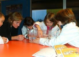 L'air que nos enfants respirent en classe est-il bon ?