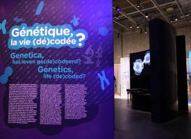 Génétique, la vie décodée?