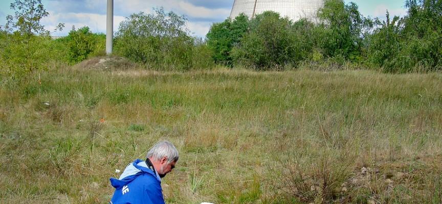 A Tchernobyl... (Ph. : T.A. Mousseau & Anders P. Møller).