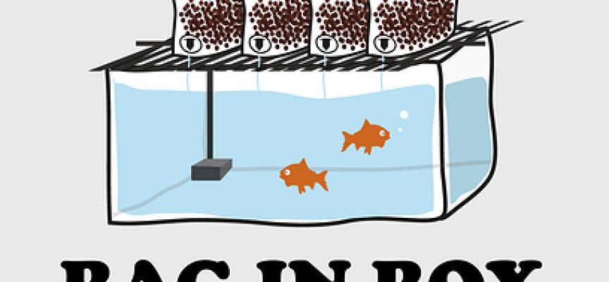 Allier élevage de poissons et culture de plantes (Aquaponia).