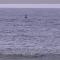 Le vent et la mer, énergies des Orcades