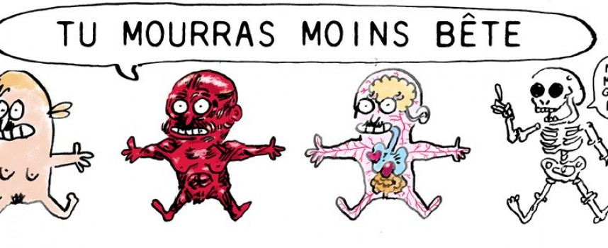 Tu mourras moins bête, une BD signée Marion Montaigne!