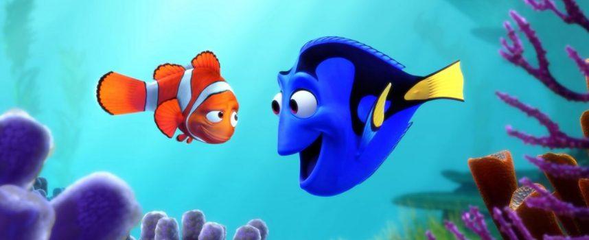Le «Monde de Dory», une menace pour les poissons chirurgiens ?