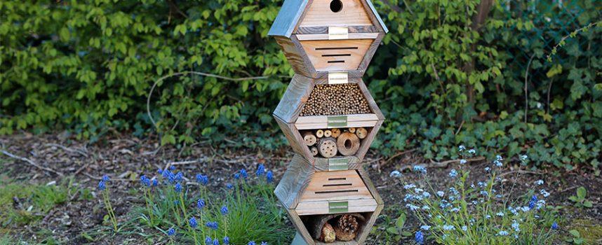 Insectes : super-héros de nos jardins