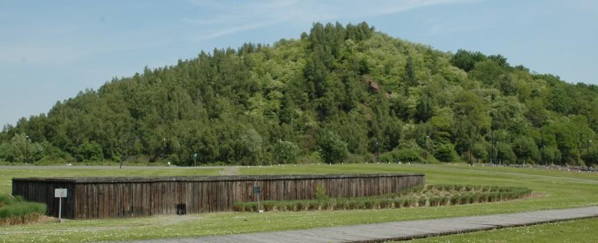 Natura 2000 : plus de biodiversité en Wallonie