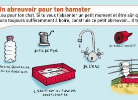 Un abreuvoir pour ton hamster