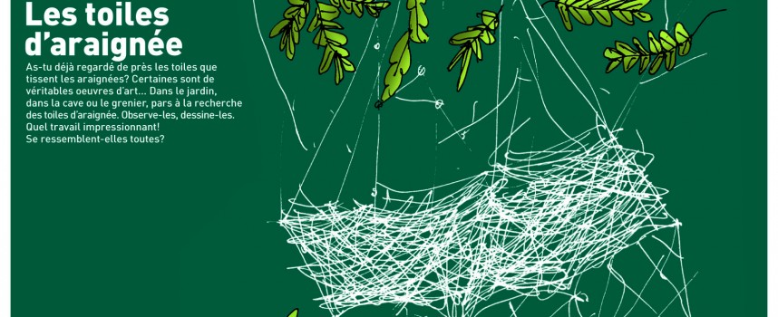 Ces étonnantes toiles d'araignées…