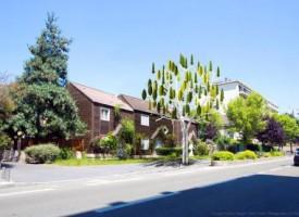 Des arbres qui ont le vent en poupe