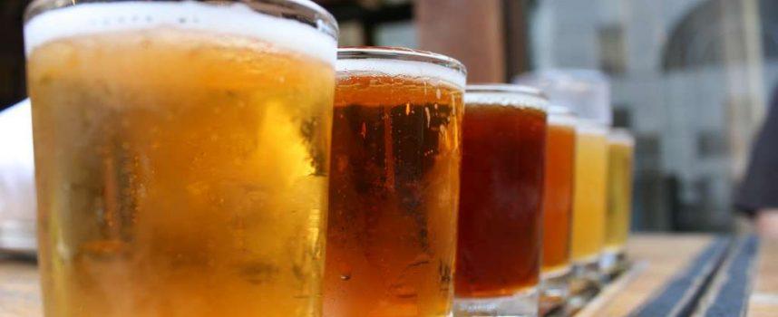 De la levure à la bière, une histoire de clones