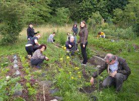 Le samedi, c'est cours de jardinage à l'Oasis