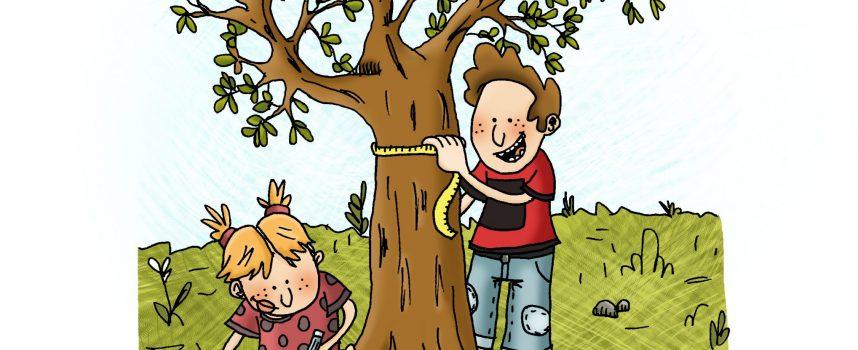 Quand les arbres racontent leur histoire