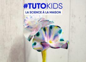 Tutokids : des fleurs pour maman